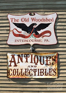 the-old-woodshed-diann-fisher.jpg