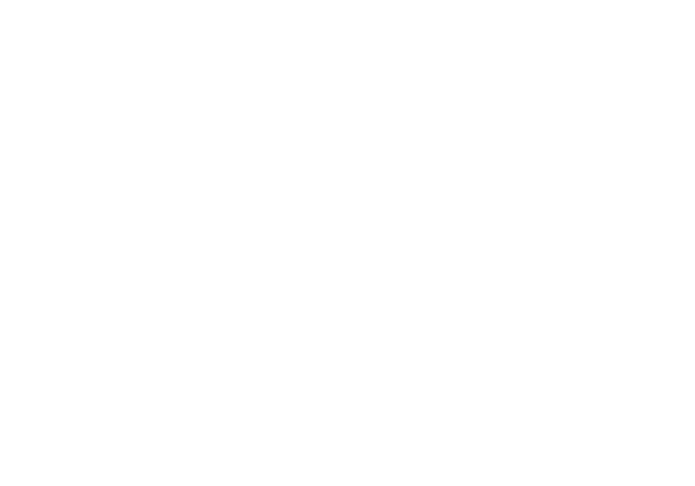 ROMA SYSTEMS LOGO WHITE.png