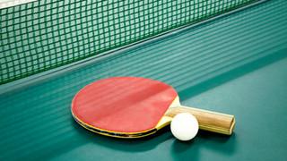 SL27 Ping Pong Paddle