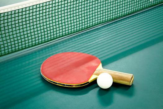 Oddíl stolního tenisu