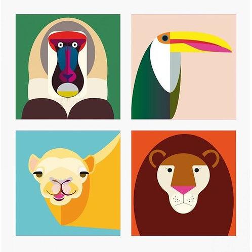 IMANES DE ANIMALES/ SET 4-  STUDIO ROOF