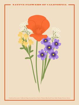Native Flower Poster