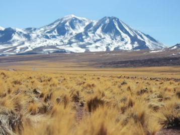 Atacama 6 dias