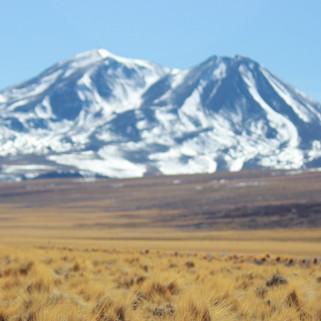 Atacama_edited.jpg
