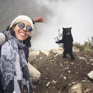 Urso.jpg