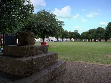 Hurling_Tour_Square-Freshford.jpg