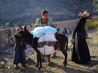 750 food aid baskets delivered in Sana'a governorate
