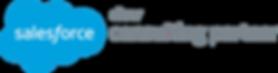 salesforce logo silver.png