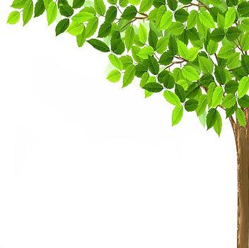 チラシ樹木-2.jpg