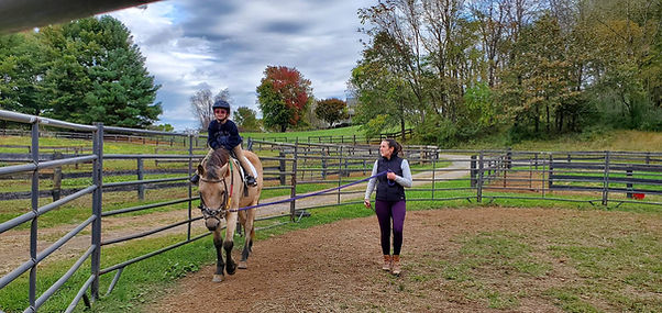 Steph and Goose on lunge red tree .jpg