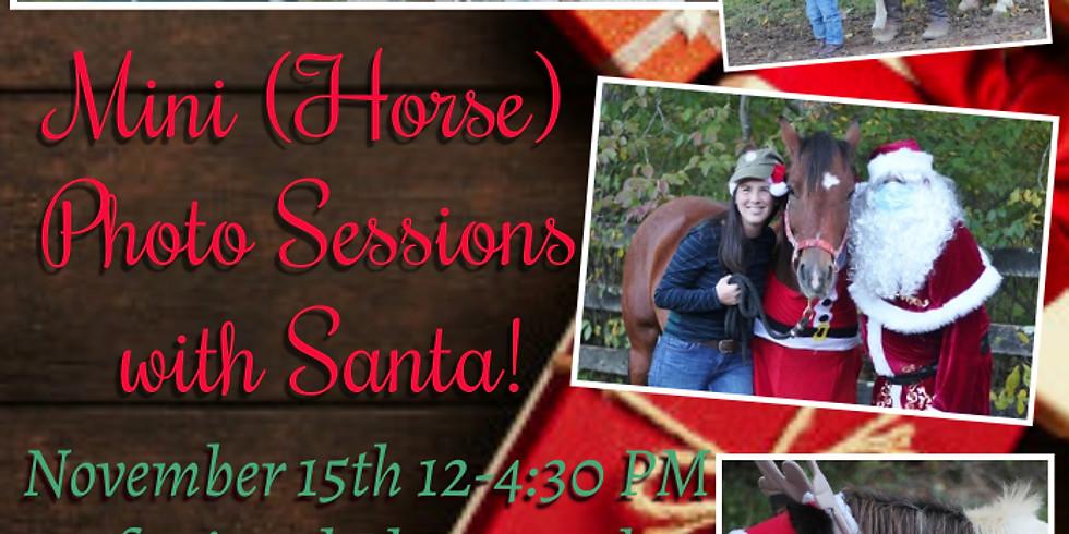 Mini (Horse) Sessions with Santa