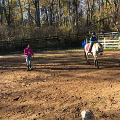 Teresa Allie and Goose on Lunge Fall 202