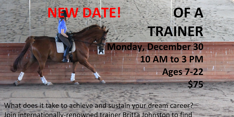 A Day in the Life of a Horse Trainer!