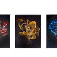 $7,000 each Rose
