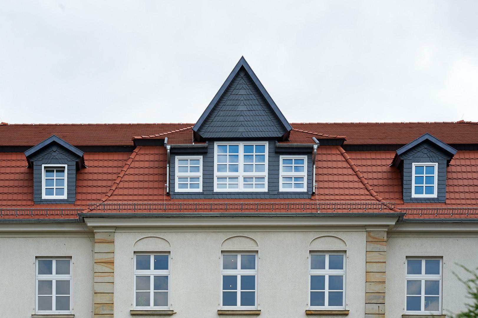Steildach Meyer Holsen Biberschwanz Kronendeckung naturrot
