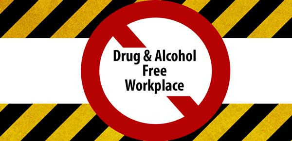 drug alcohol policy writer