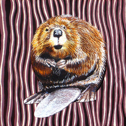 New York American Beaver