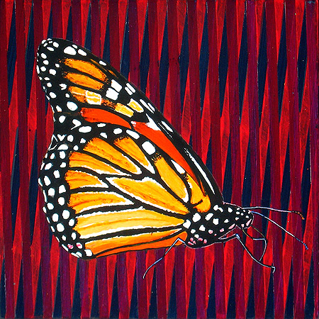 Vermont Monarch Butterfly