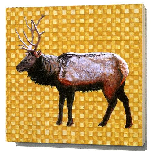 Utah Rocky Mountain Elk