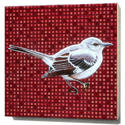 Arkansas Mockingbird