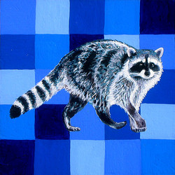 Tennessee Raccoon