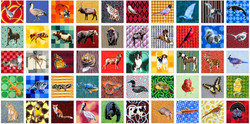 Fifty State Animals
