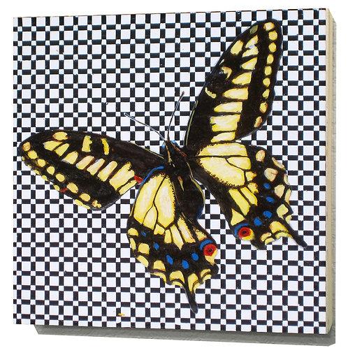 Oregon Swallowtail Butterfly