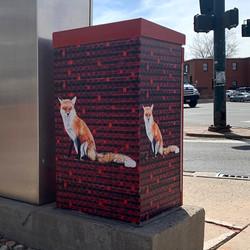 Mississippi Red Fox