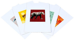 Fifty State Animals Prints Promo