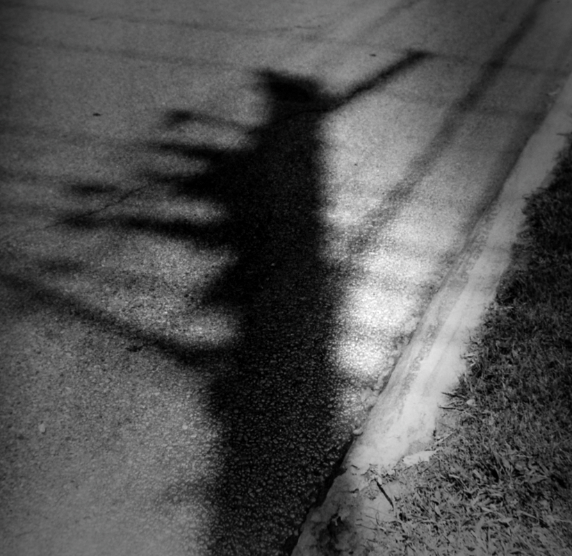 shadows, midwest