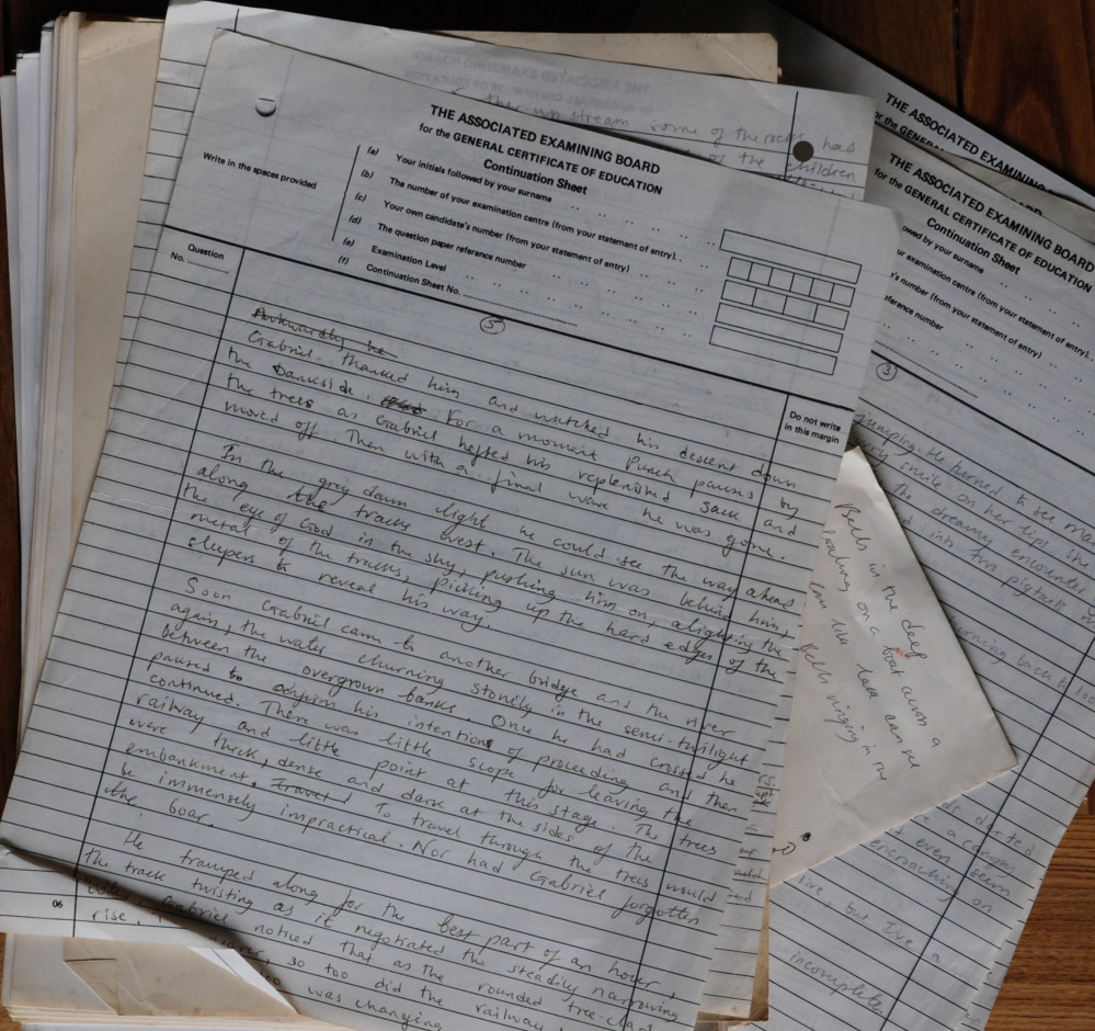 parts of the original pencil writings on old exam board 'O' level papers