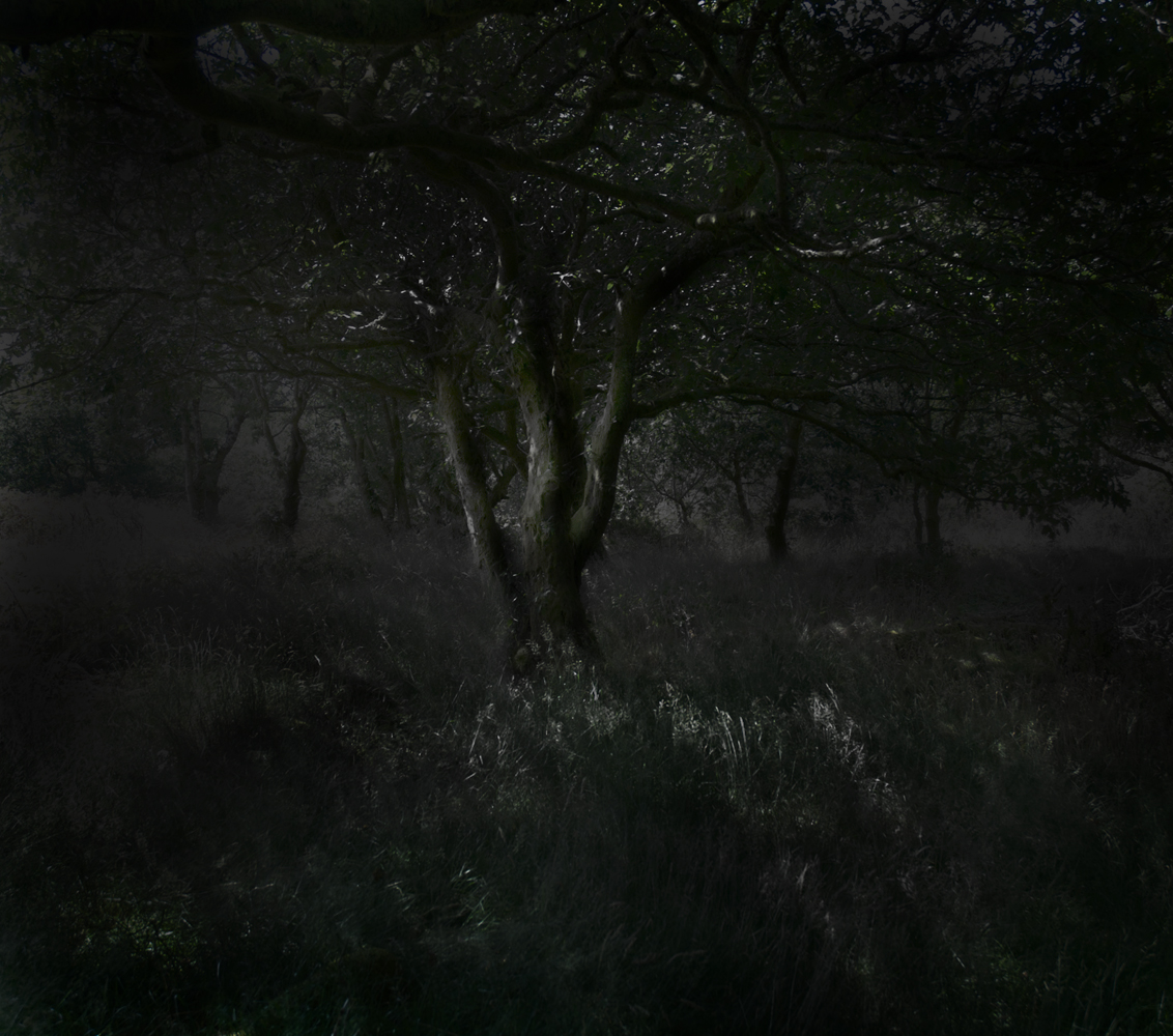 after dark (Ceridwen)