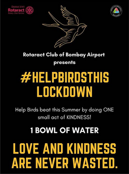 Help the birds