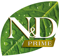 10_09_nd-prime.png
