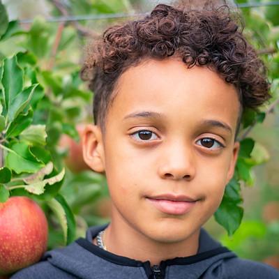 Julias Henson- Apple Orchard minis
