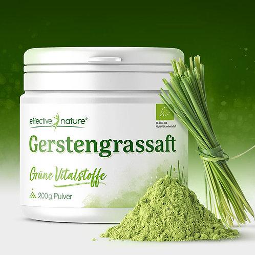 Gerstengrassaft - Pulver