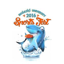 Sports Fest 2016