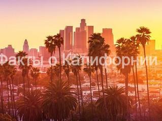 30 фактов о солнечной Калифорнии