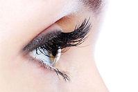 Eyelash tinting & extension results