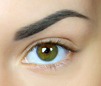 Eyebrow shape with waxing or sugaring