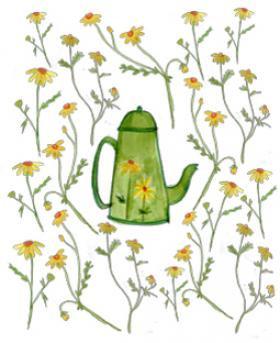 Carte a planter Fleurs jaune arrosoir