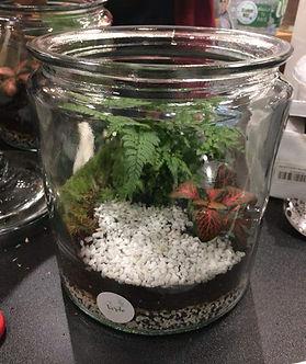 terrarium réalié en atelier
