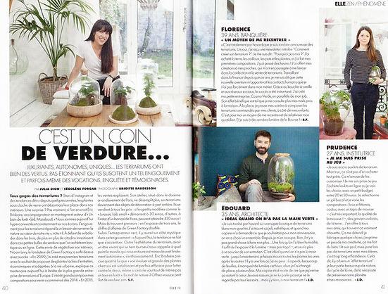 article magazine Elle