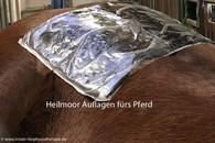 Heilmoor für Pferde