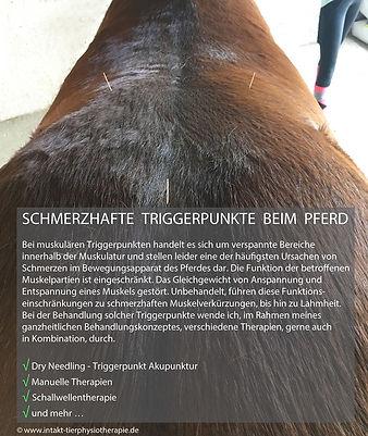 Schmerzhafte-Triggerpunkte-beim-Pferd