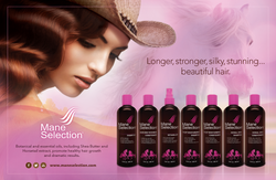 MANE SELECTION  |  2 pg ad