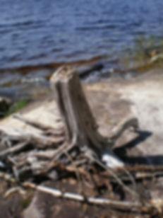 BWCA Canoe Trips, Ely Minnesota, Packsack Canoe Trips and Log Cabins