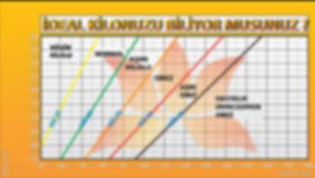 Vücut kitle indeksi hesaplama