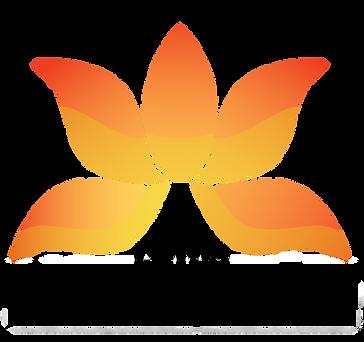 lotus adipositas chirurgie.png