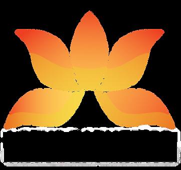 lotus_bariatrics_logo-renkli_kopyası.pn